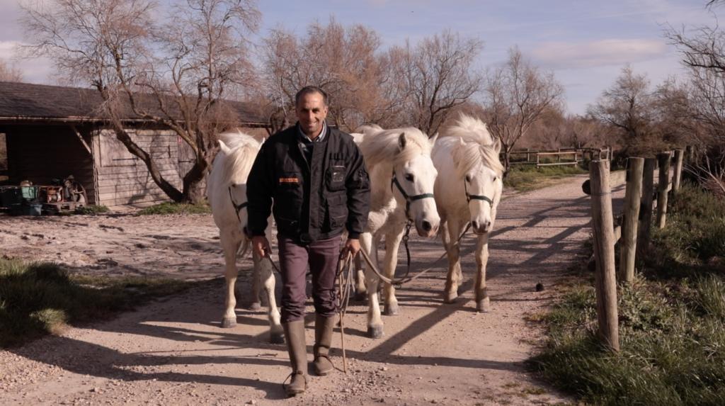 Jean-Marie Reissi et ses chevaux
